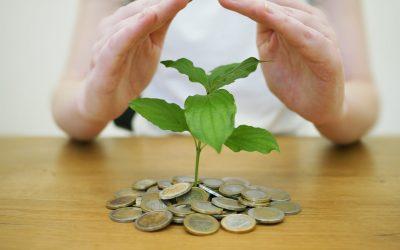 Zakładowy Fundusz Świadczeń Socjalnych (ZFŚS) – podstawowe informacje