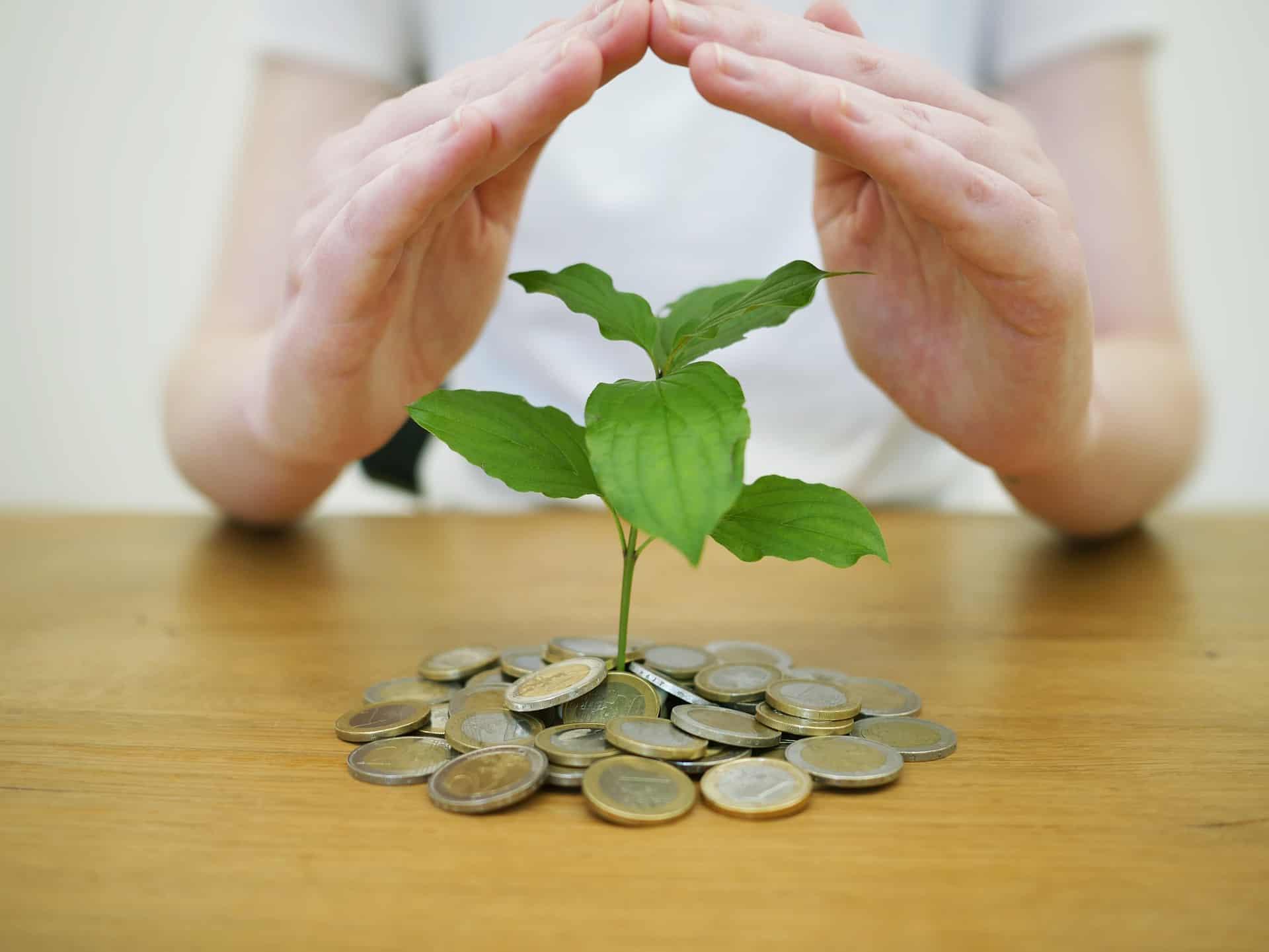 Zakładowy Fundusz Świadczeń Socjalnych